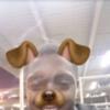 fling profile picture of Kris_420
